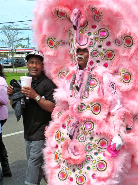 Big Chief in his Flamingo Suit